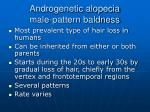 androgenetic alopecia male pattern baldness