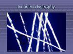 trichothiodystrophy59
