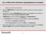 les conflits entre indications g ographiques et marques33