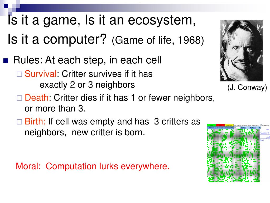 Is it a game, Is it an ecosystem,