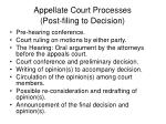 appellate court processes post filing to decision