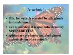 arachnids30