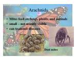 arachnids32