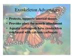 exoskeleton advantages