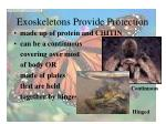 exoskeletons provide protection