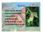 insecta40