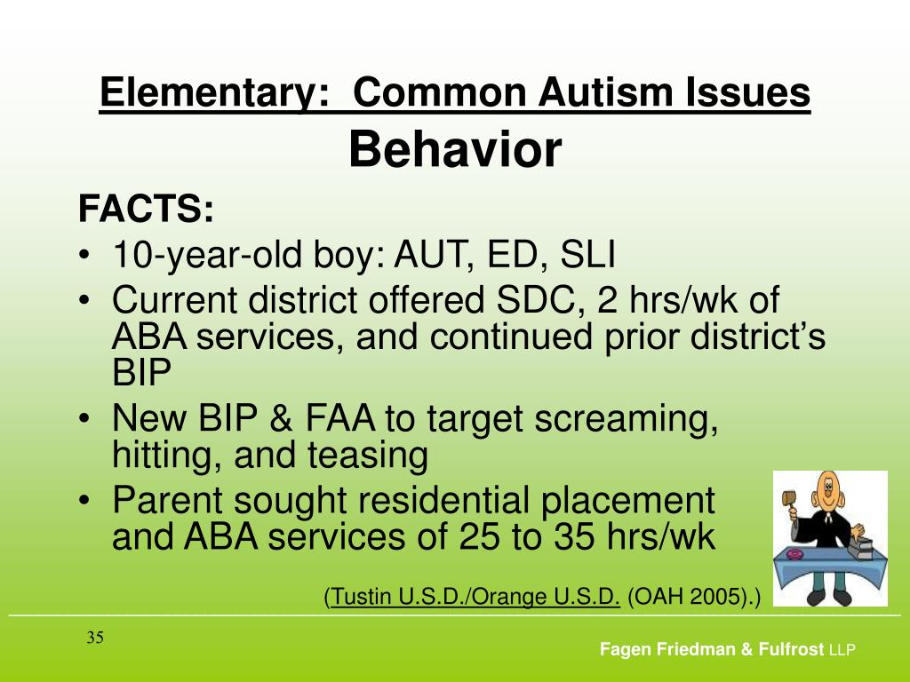 Elementary:  Common Autism Issues