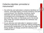 collective identities primordial or instrumental