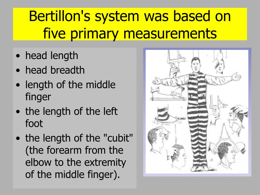 Bertillon's system was based on five primary measurements