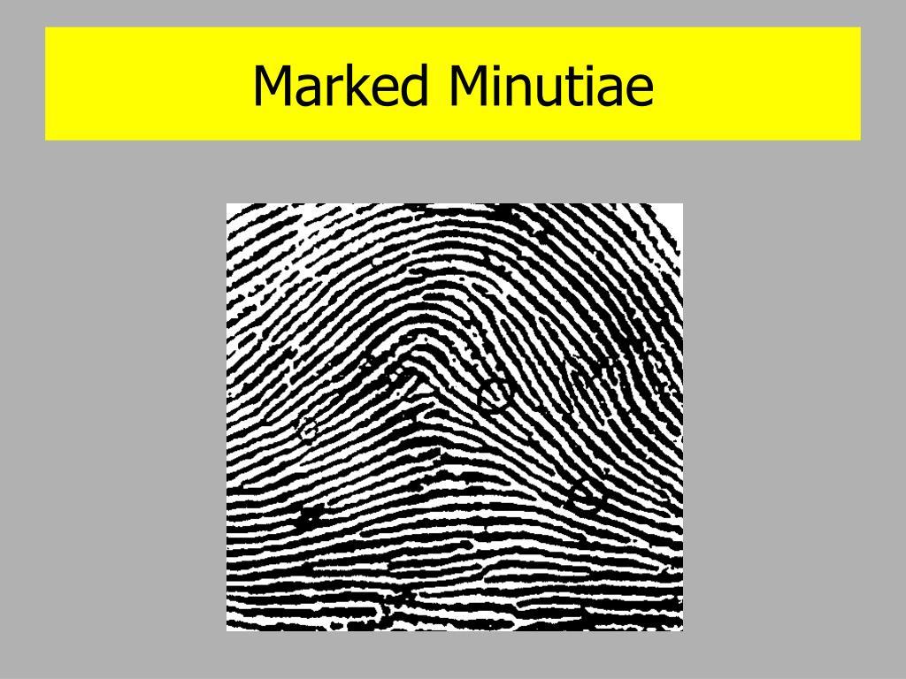 Marked Minutiae