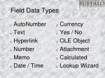 field data types