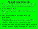 animal kingdom cont