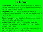 cells cont38