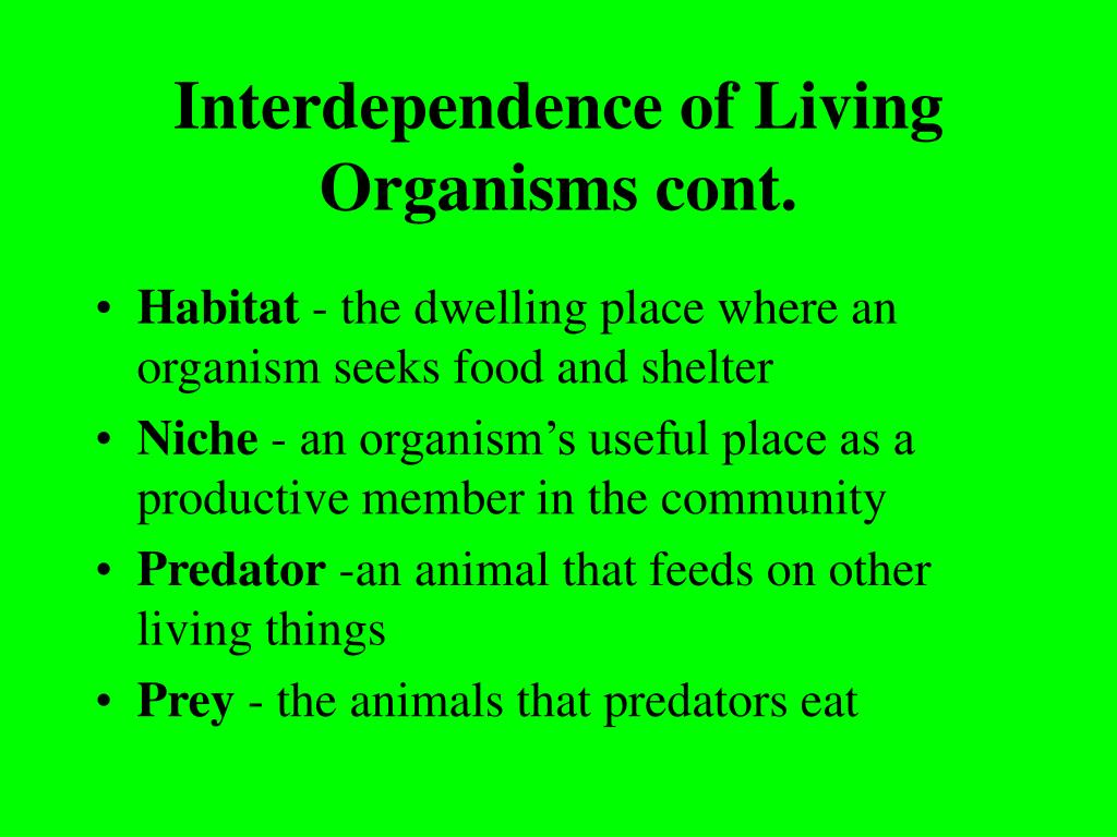 Interdependence of Living Organisms cont.