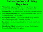 interdependence of living organisms