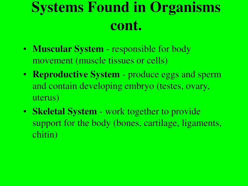 Systems Found in Organisms cont.