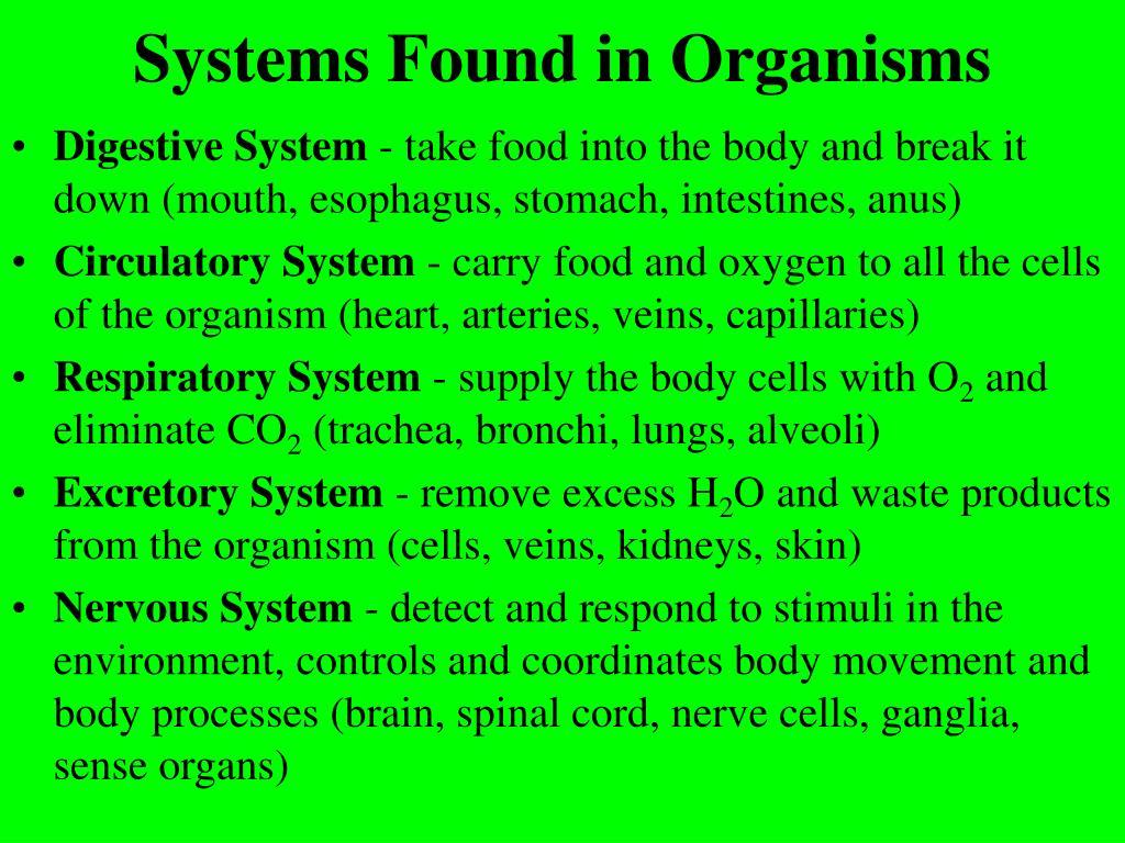 Systems Found in Organisms