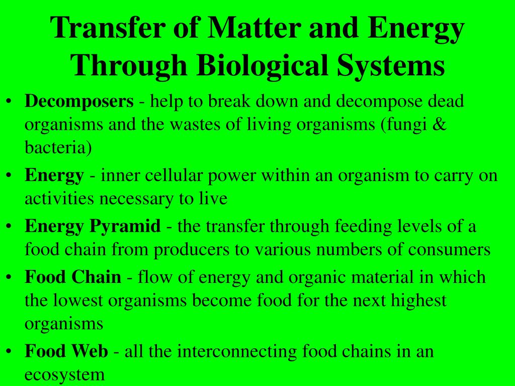 Transfer of Matter and Energy Through Biological Systems