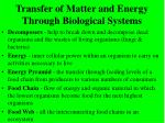 transfer of matter and energy through biological systems22