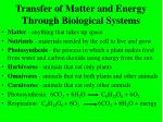 transfer of matter and energy through biological systems23
