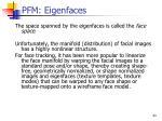 pfm eigenfaces