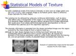 statistical models of texture