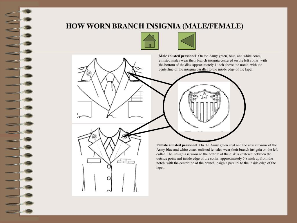 HOW WORN BRANCH INSIGNIA (MALE/FEMALE)
