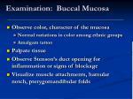 examination buccal mucosa
