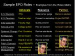 sample epo roles examples from the roles matrix3