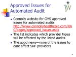approved issues for automated audit