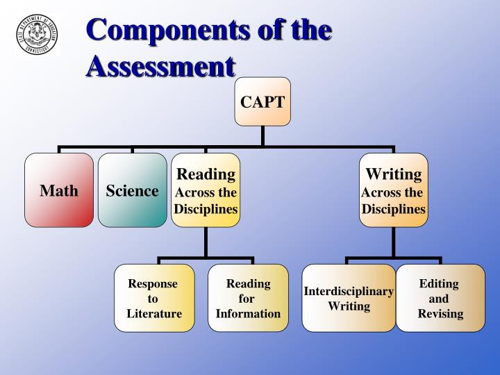 Components of the assessment