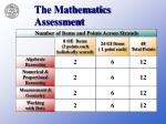 the mathematics assessment