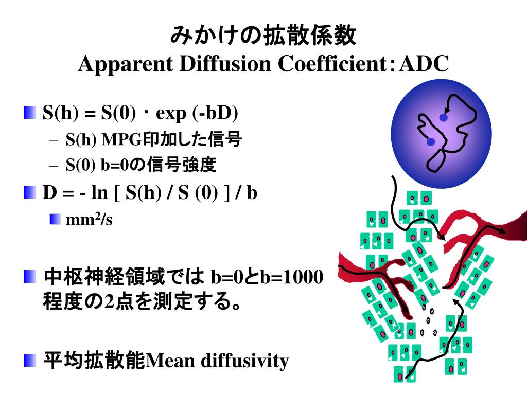apparent diffusion coefficient adc l.
