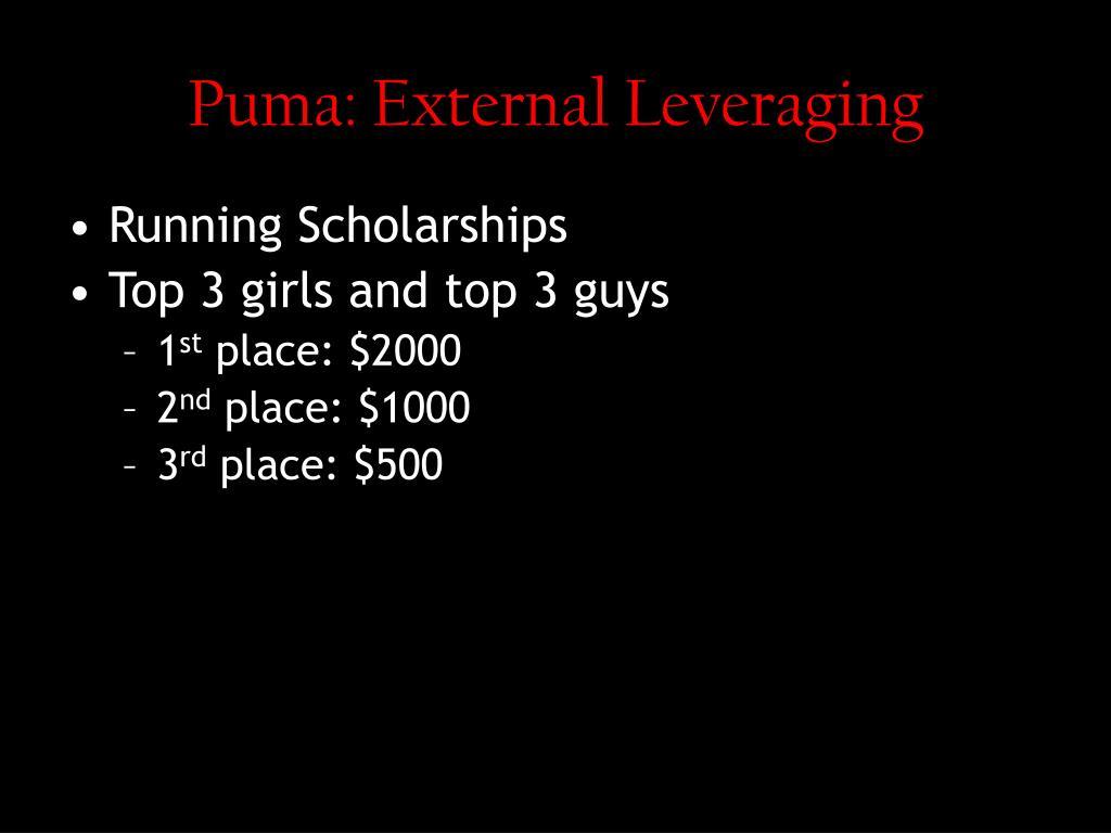 Puma: External Leveraging