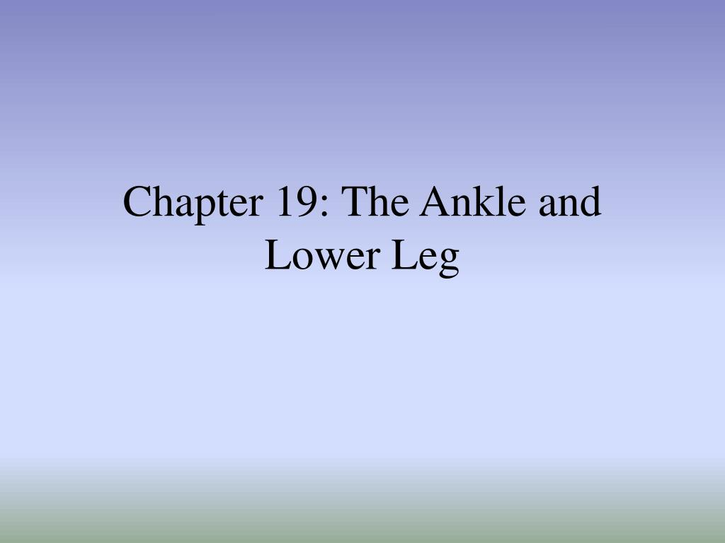 chapter 19 the ankle and lower leg l.