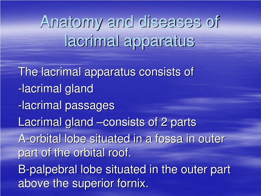 anatomy and diseases of lacrimal apparatus l.