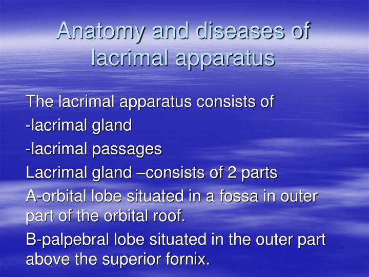 anatomy and diseases of lacrimal apparatus n.