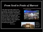 from seed to fruits of harvest