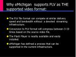 why emichigan supports flv as the supported video format