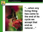 when any living thing has come to the end of its cycle we accept that end as natural
