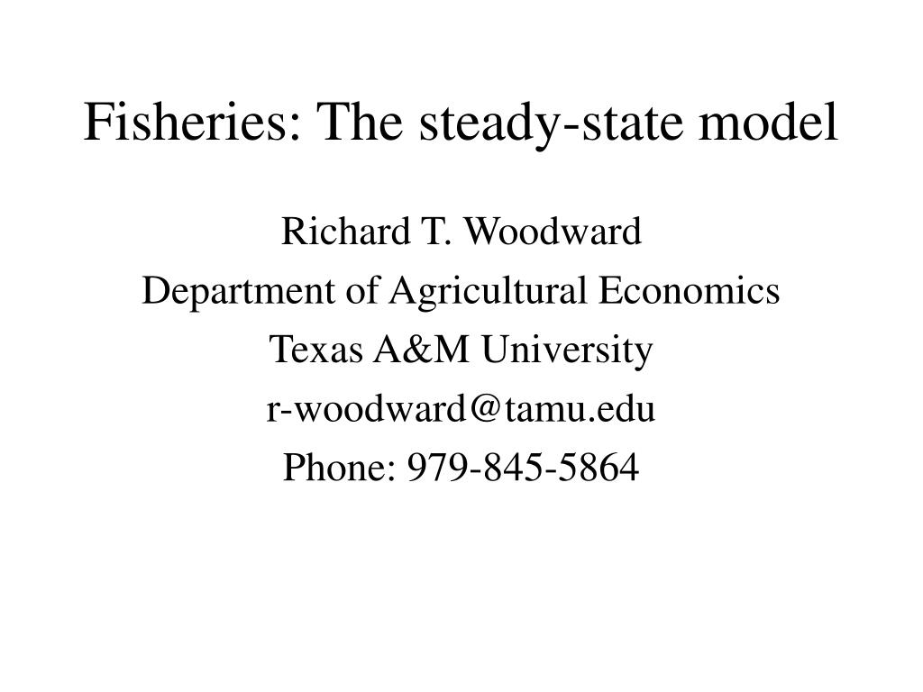 fisheries the steady state model l.