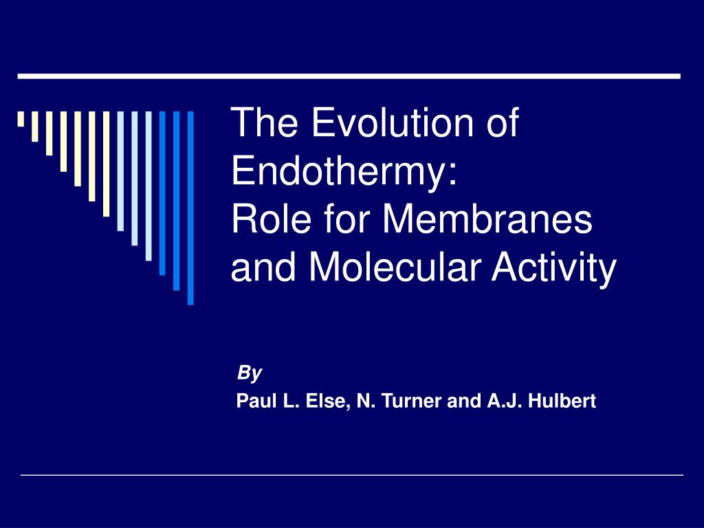 the evolution of endothermy role for membranes and molecular activity l.