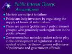 public interest theory assumptions