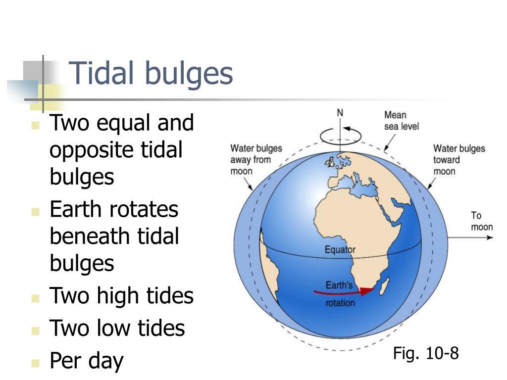 Tidal bulges