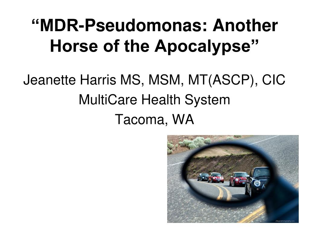 mdr pseudomonas another horse of the apocalypse l.