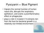 pyocyanin blue pigment
