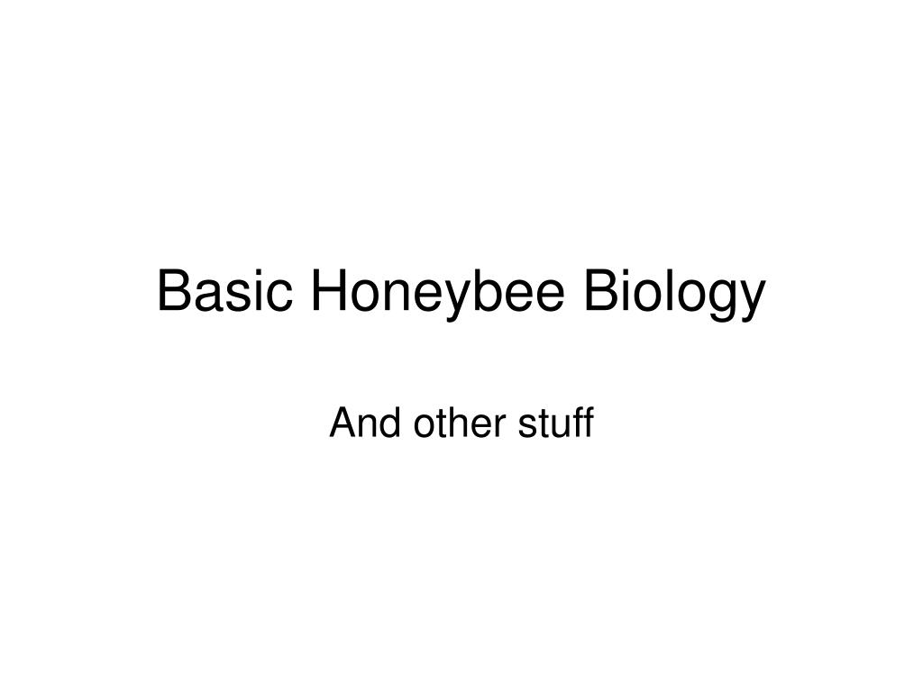 basic honeybee biology l.