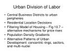 urban division of labor