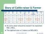 story of cattle raiser farmer42