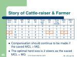 story of cattle raiser farmer45